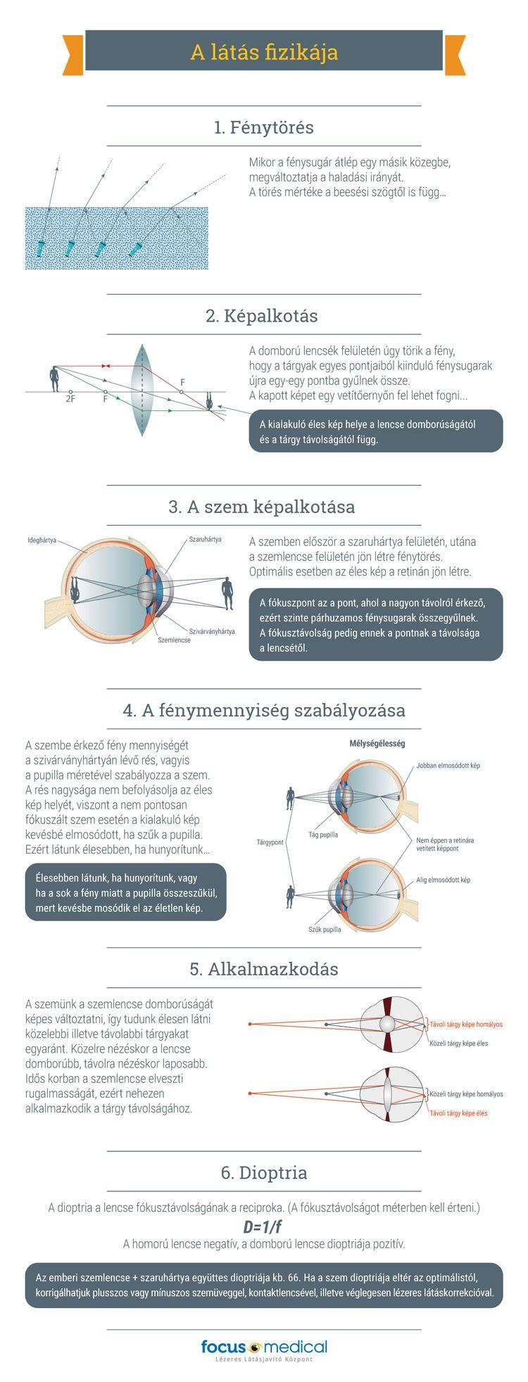 a látás korának dinamikája élelmiszeripari termékek a látás javítása érdekében